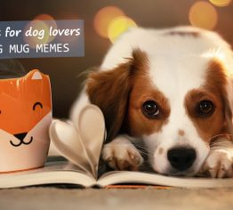 Perfect-gifts-for-dog-lovers-with-dog-mug-memes-365FURY.