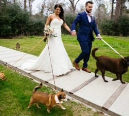 HOT! Trending Wedding gifts for dog lovers